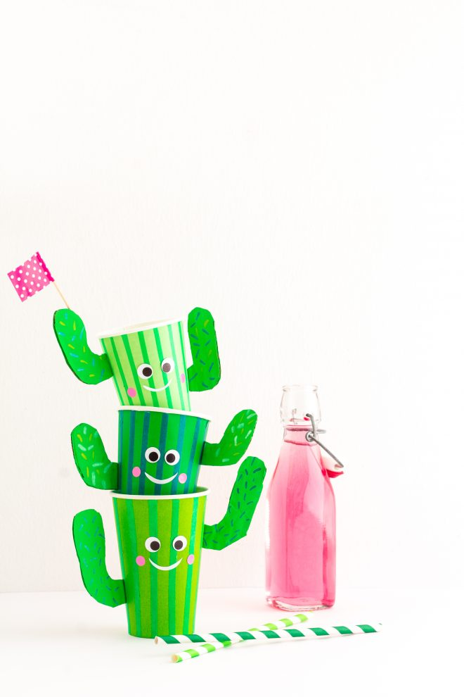 DIY vaso cactus