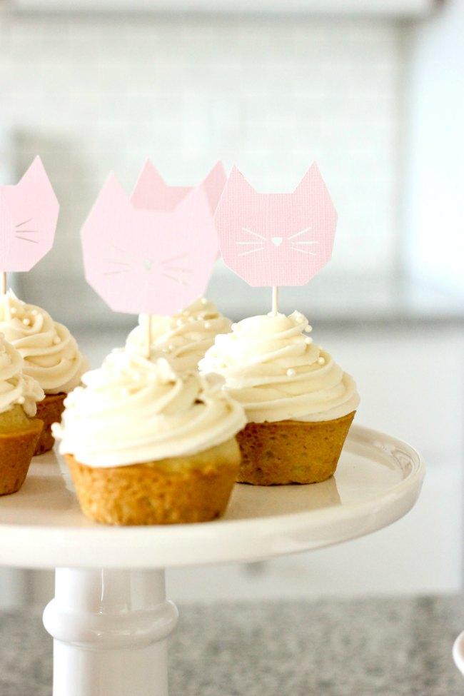 fiesta-gatitos-9