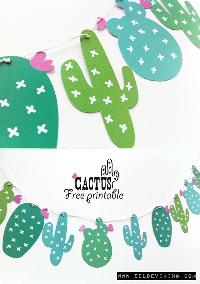 guirnalda-cactus